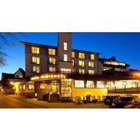 HOTEL SAINT MICHEL DE CANADA logo Directeur resto emploi restaurant